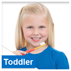 Toddler Toothbrushes