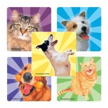 Happy Pets Stickers