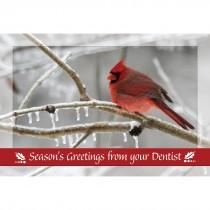 Dental Seasons Greetings Recall Card