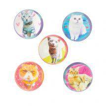 Cat Bouncing Balls