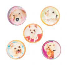 Dog Bouncing Balls