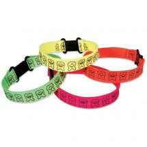 Happy Tooth Clip Bracelets