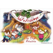 Welcome To Our Practice Animals Recall Cards