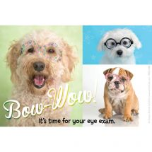 Rachael Hale Bow-Wow Eye Exam Recall Cards
