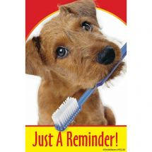 Dog with Toothbrush Recall Cards