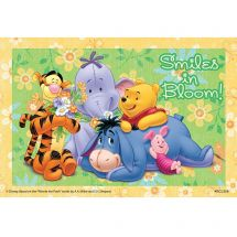 Disney Pooh Smiles Bloom Recall Cards