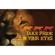 Lion Pride Eyes Recall Cards