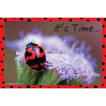 Ladybug Recall Cards