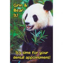 Grin & Bear It Panda Recall Cards