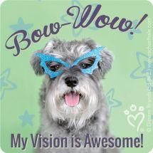 Rachael Hale Vision Stickers