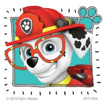PAW Patrol Vision Stickers